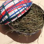Ei aus Pappmaché basteln