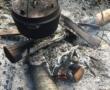 Hühner-Erdnuß-Topf aus dem Lagerfeuer